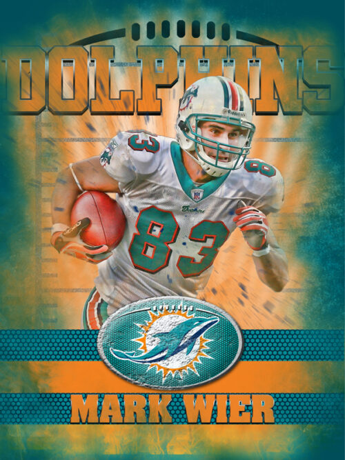Dolphins Personal Poster Template